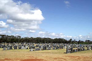 Forest Hill Cemetery, Port Elizabeth